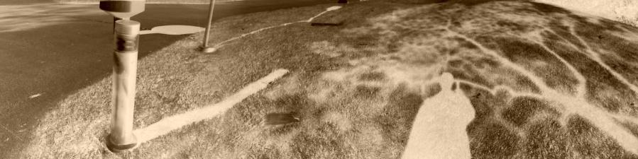 Solarized Shadow of Myself