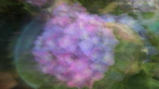California Spring Impressionism 2014