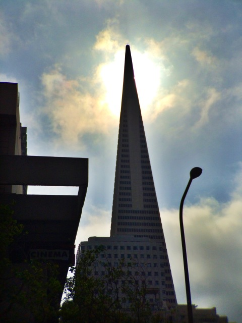 Shapes of Downtown San Francisco