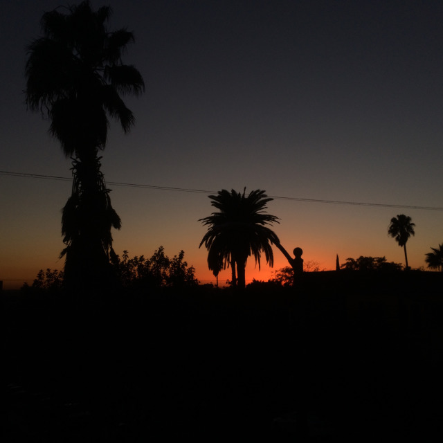 Another Tequila Sunset.  Silver Lake Los Angeles 2016