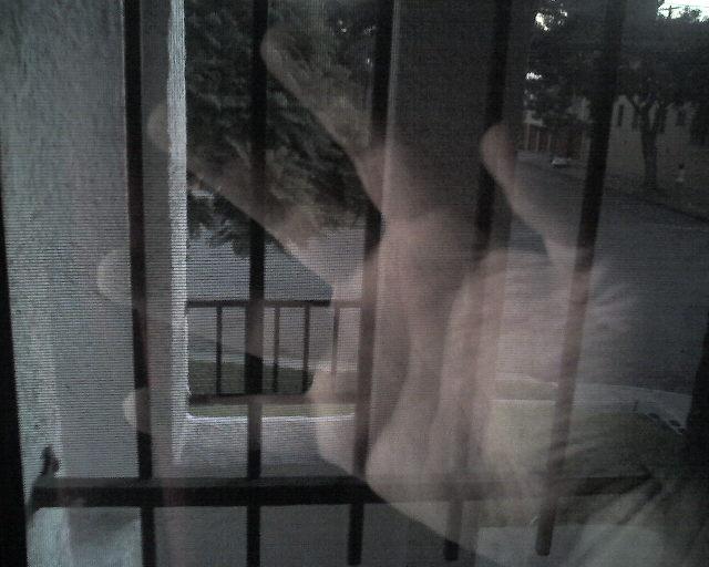 Caged in LA. 2007